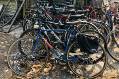 Biciclette da recupero